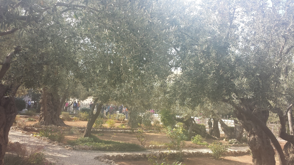 You Were Healed Prayer (Garden of Gethsemane)